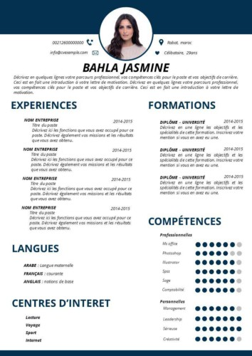 CV simple au format PowerPoint