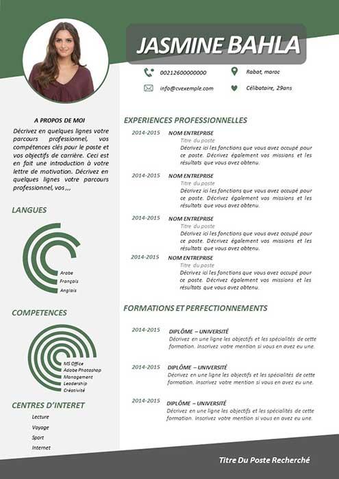 CV Professionnel 2019