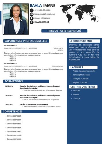 CV Original Professionnel