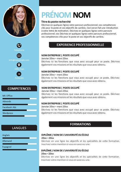 CV Professionnel Féminin