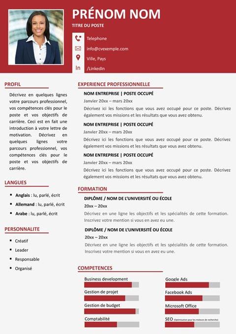 CV Chronologique