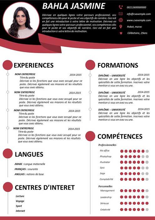 Exemple de CV à remplir